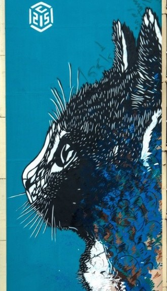 Le chat de l'artiste C215, à découvrir à l'angle de la rue Nationale